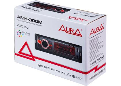 AMH 300M_01